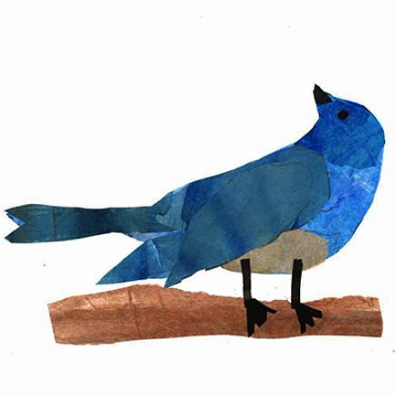 Birds of the Palouse