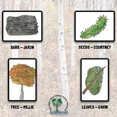 Tree Signs