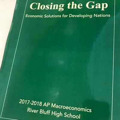 Closing the Gap: Economic Solutions for Developing Nations