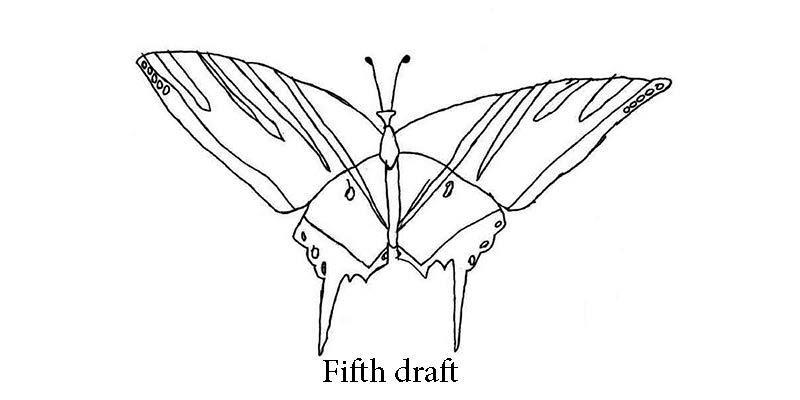 Austin's Butterfly 5