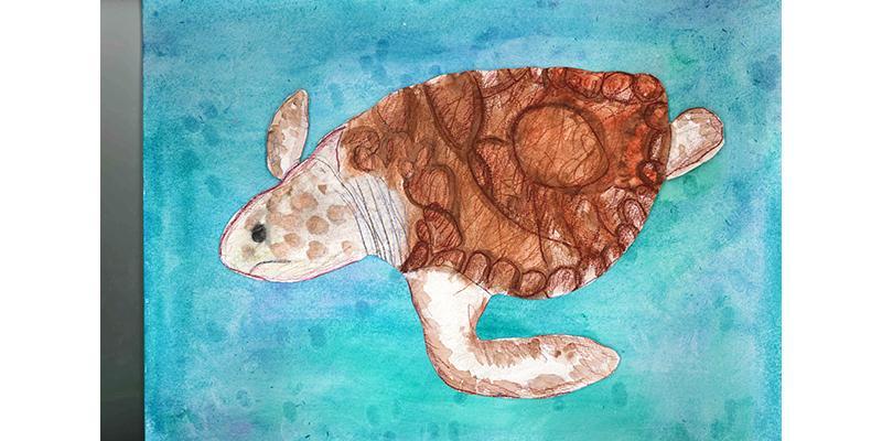 Sea Creatures 6
