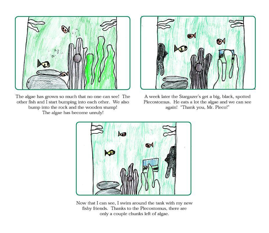 Fish Tales 5